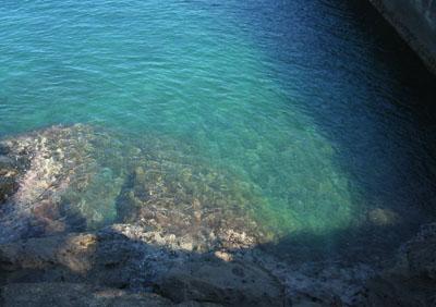 きれいな西伊豆の海
